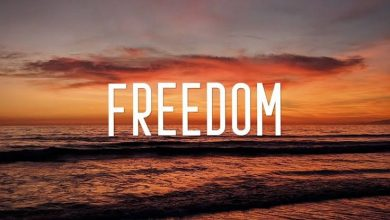 Photo of Freedom to be Free