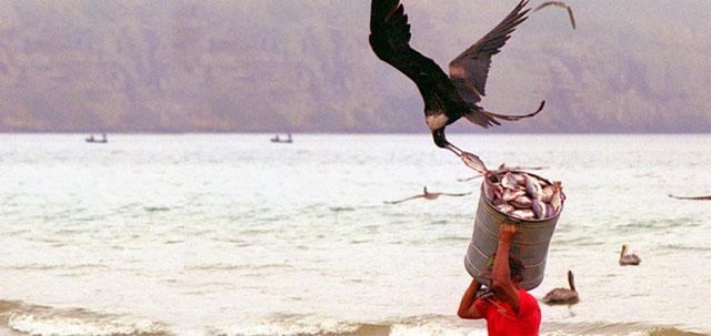 Photo of Mengejar Pencuri Ikan.