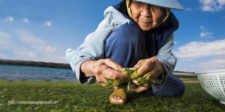 Photo of Kenapa Orang Panjang Umur Sementara yang Lain Tidak?